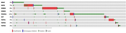 "Landscape of ""driver"" mutations detected in tumors from MSK patients tested by MSK-IMPACT"