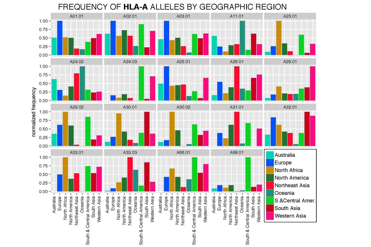 Frequency of select HLA-A alleles across different geographic regions