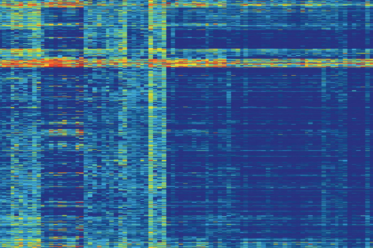Methylation map of prostate cancer from The Cancer Genome Atlas data set (Courtesy of Joshua Armenia, Nikolaus Schultz laboratory)