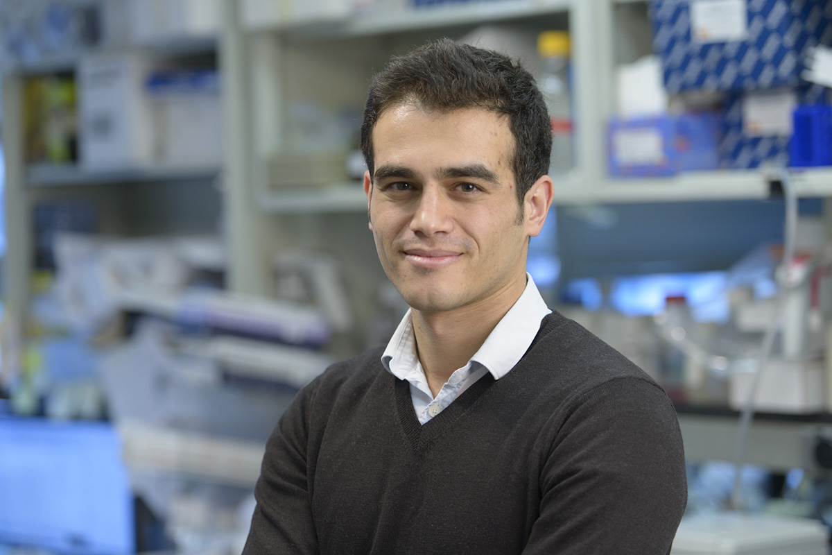 MSK researcher Mohamad Hamieh