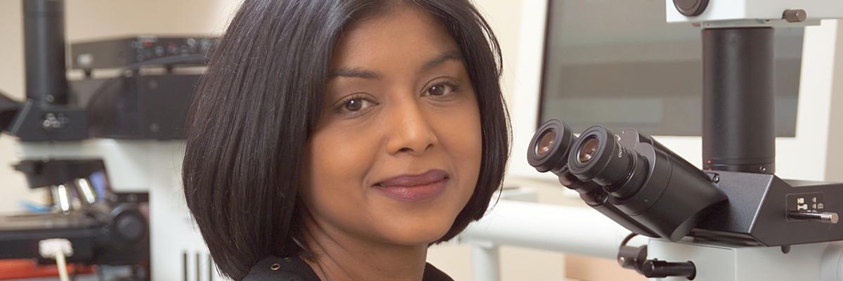 Kishwer S. Nehal | Memorial Sloan Kettering Cancer Center