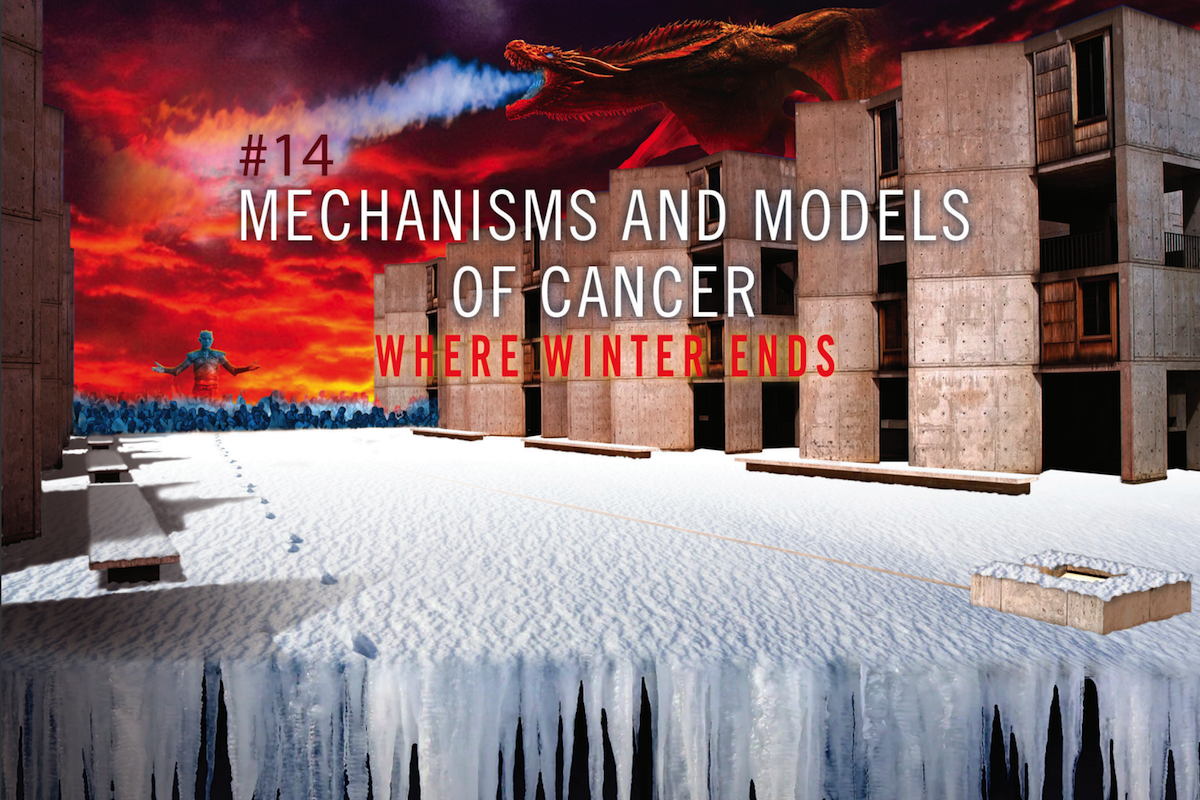 Salk Mechanisms and Models of Cancer