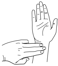 Figure 1. Placing 3 fingers across wrist