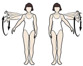 Figura3. Círculos con los brazos