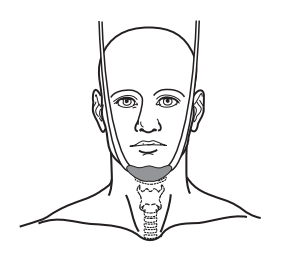 Figure 2. Chin strap for your radiation