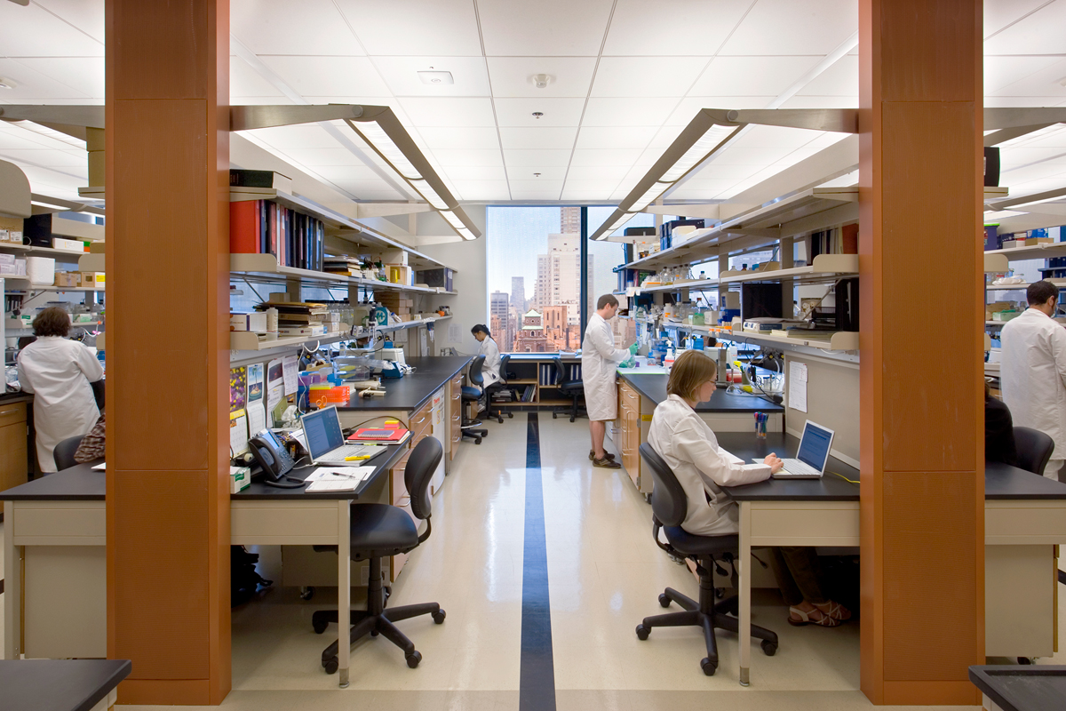 A Laboratory in the Zuckerman Research Center