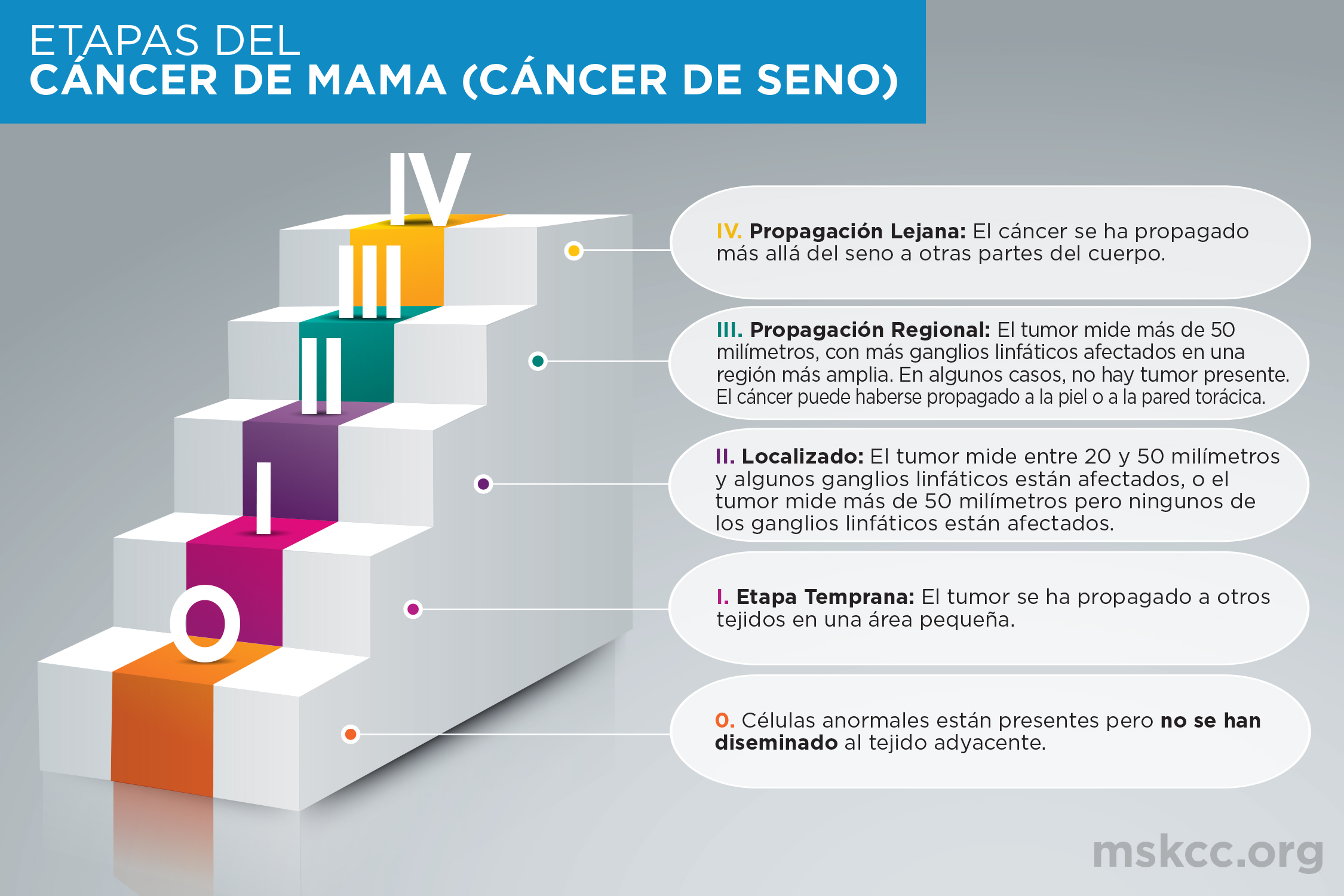 Breast Cancer Infographic - Spanish