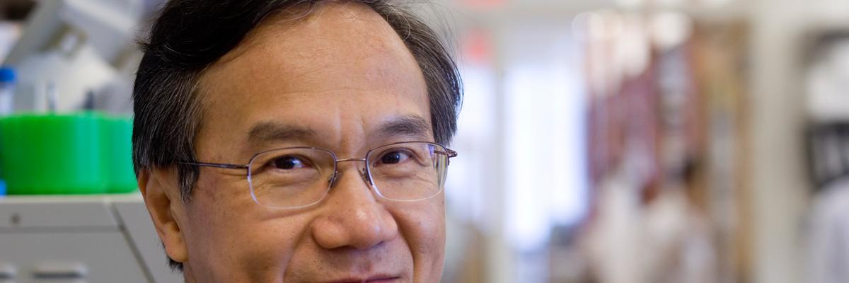 At Work: Neuroblastoma Program Head Nai-Kong Cheung - cheung-nai-kong-3x1