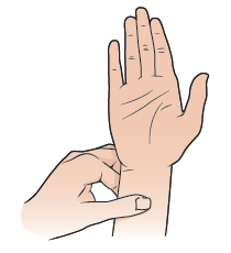 Image result for p6 pressure point