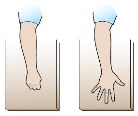Рисунок 18. Сгибание пальцев