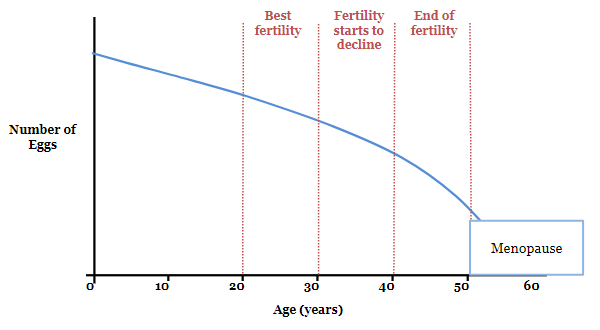 Figure 2. Ovarian reserve and age