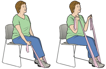 Figure 13. Bicep curls with an elastic band