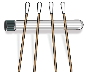 Figure 1. Swabs drying on test tube