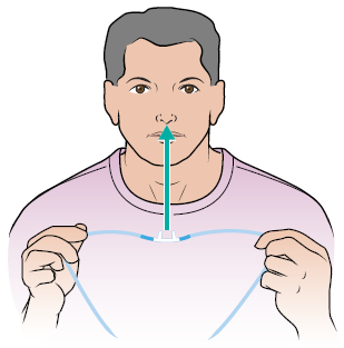 Figure 6. Place the nasal cannula prongs into your nose