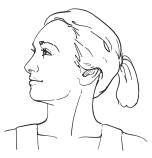 Figure 11. Head turned to the right