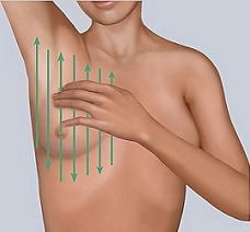 Figure 5. Using the vertical pattern to examine your breast