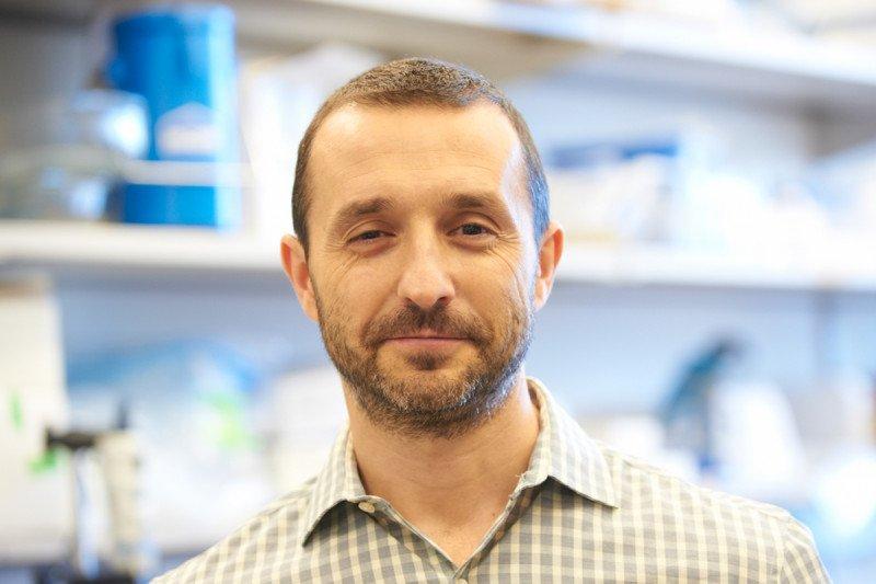 Investigator Maurizio Scaltriti