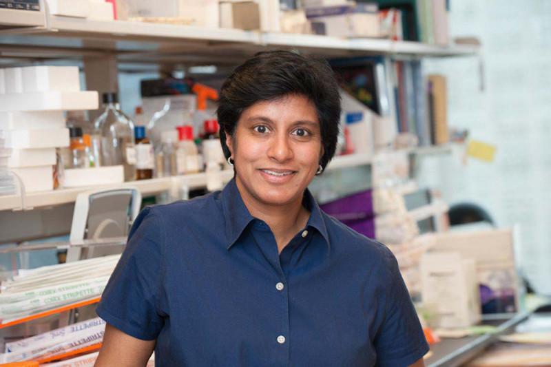 Mary Philip, MD PhD