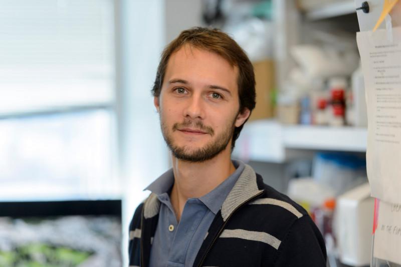 Gabriele Ciceri, Ph.D.