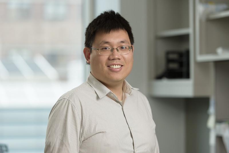 Wei Shao