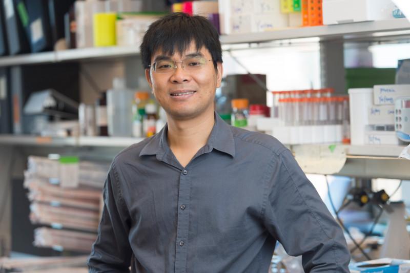 Yufeng  Shi, PhD