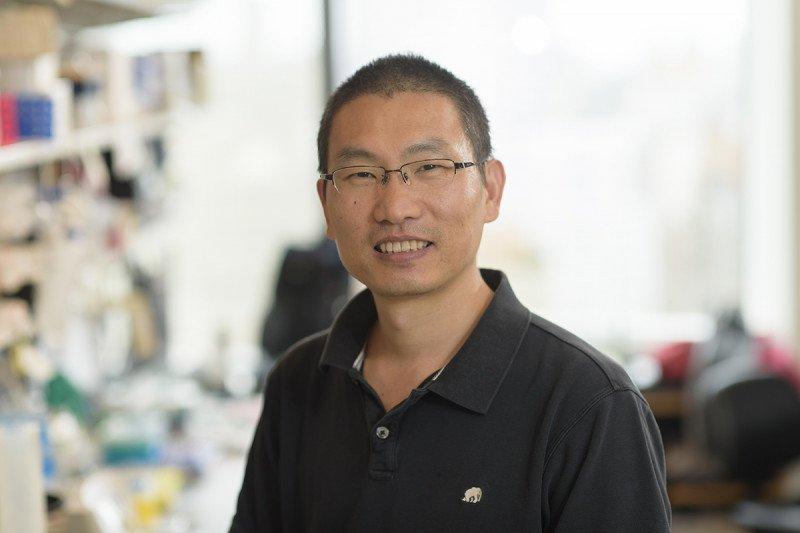 Minggang Zhang, Research Associate