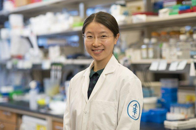 Grace  Xiang  Li, MS