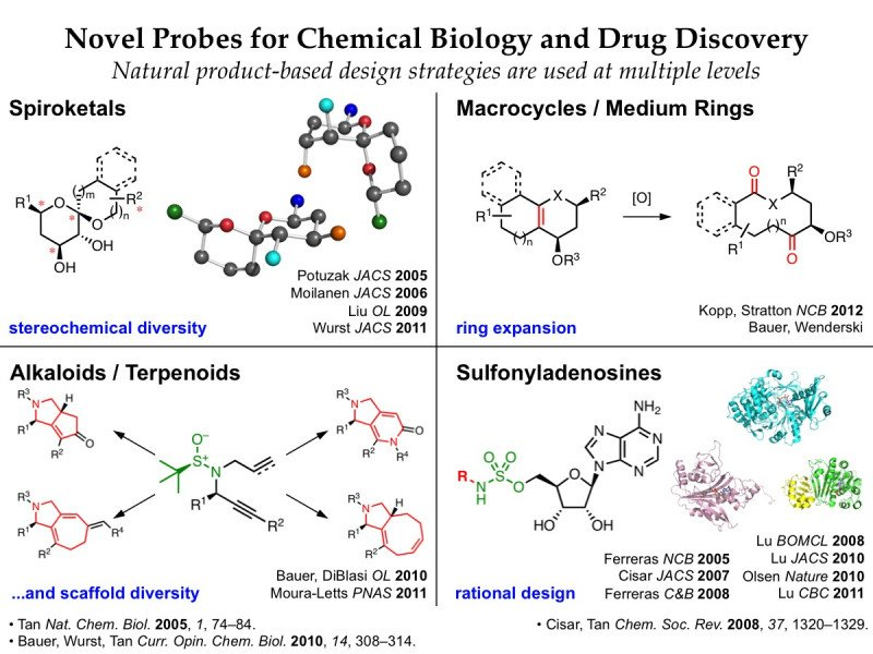 drug chemical biology discovery natural synthesis research rational strategies based lab probes levels oriented chemistry diversity tan synthetic derek novel