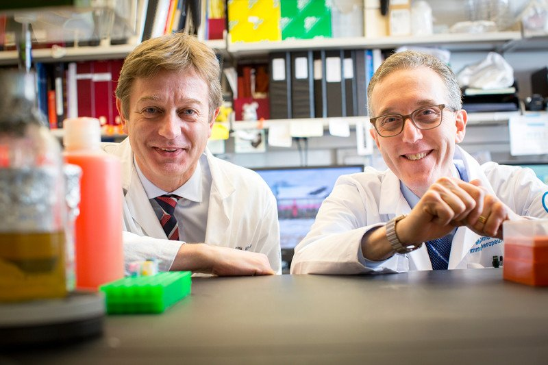 Cancer immunologists Marchel van den Brink & Jedd Wolchok