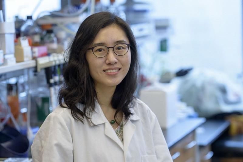 Hyejin Choi, PhD