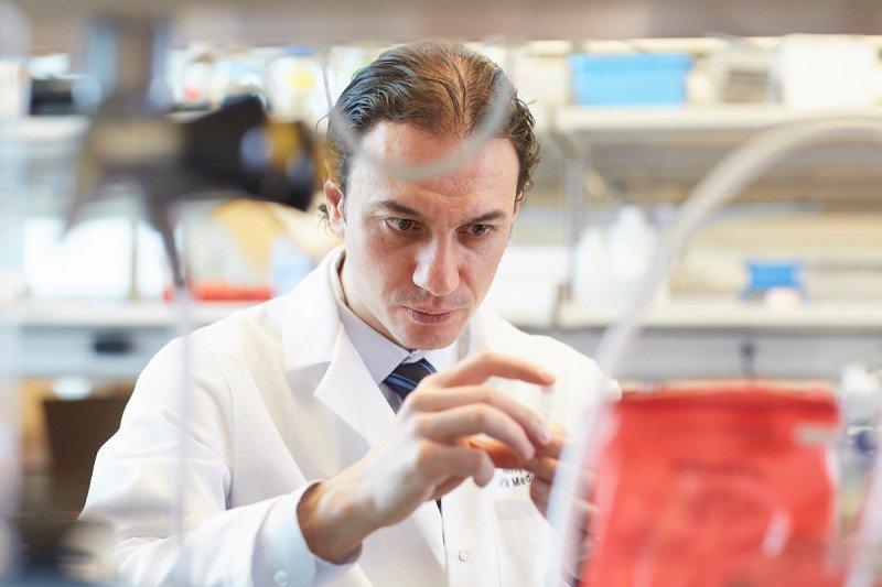 Medical oncologist Dmitriy Zamarin