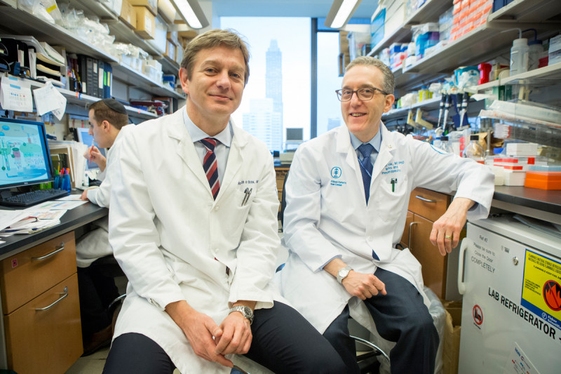 Marcel van den Brink and Jedd Wolchok describe the impact of the Parker Institute for Cancer Immunotherapy on research efforts at Memorial Sloan Kettering.