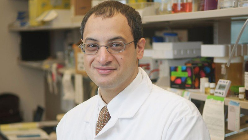 Medical oncologist Omar Abdel-Wahab discusses data linking TET2 with the function of cytosine deaminases as a pathway toward DNA demethylation.
