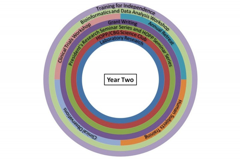 Second Year Core Curriculum