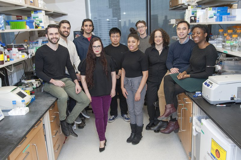 The Yael David Lab