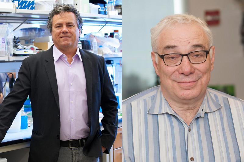 Scott Lowe and Neal Rosen