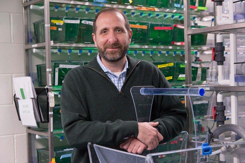 The Richard White Lab
