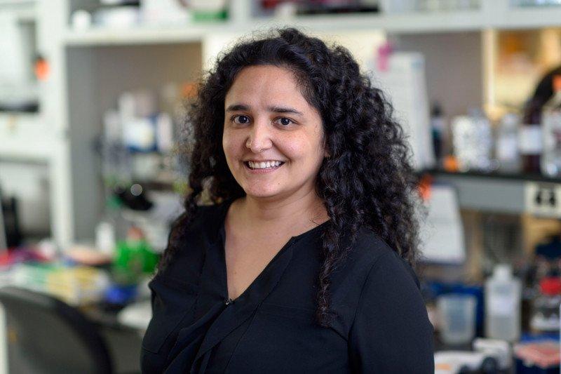 Fresia Pareja, MD, PhD