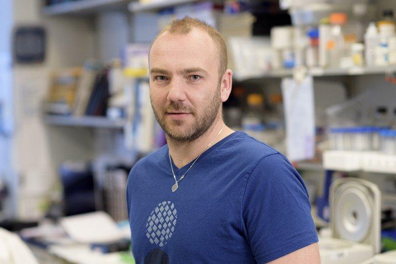 Alexandre Wojcinski, PhD
