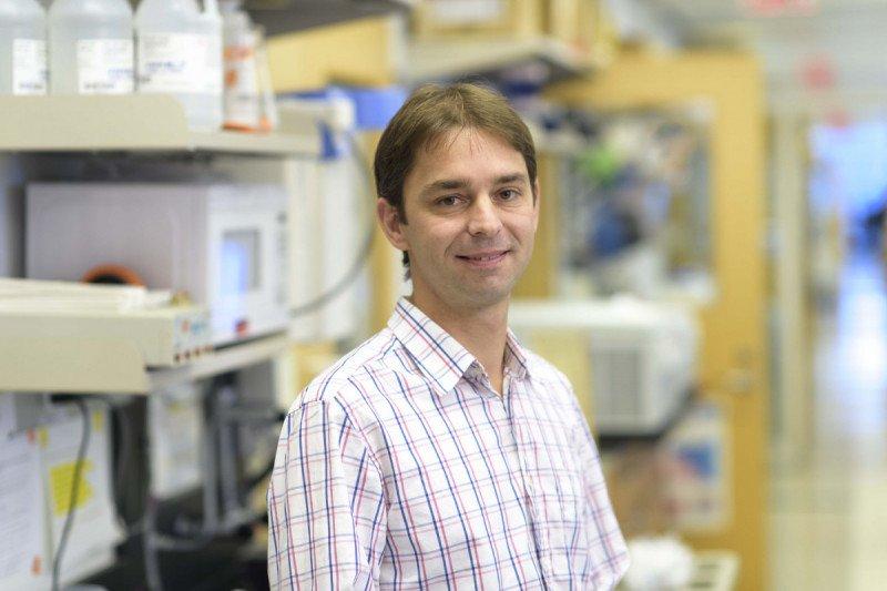 Christoph  Stein-Thoeringer, MD