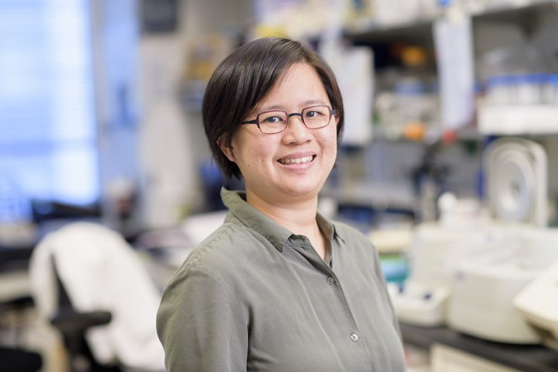 Synphen Wu, MD, PhD