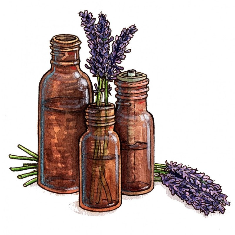 Aromatherapy | Memorial Sloan Kettering Cancer Center