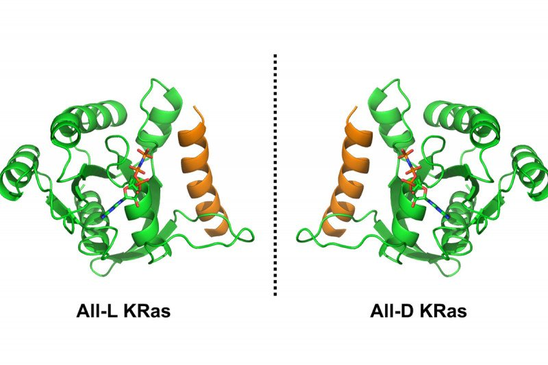Left-handed and right-handed KRas molecules
