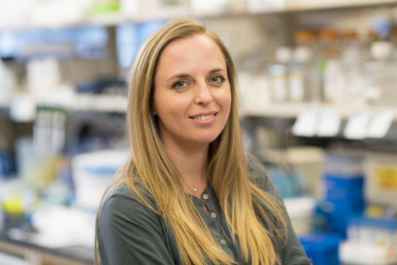Katerina Hatzi, PhD