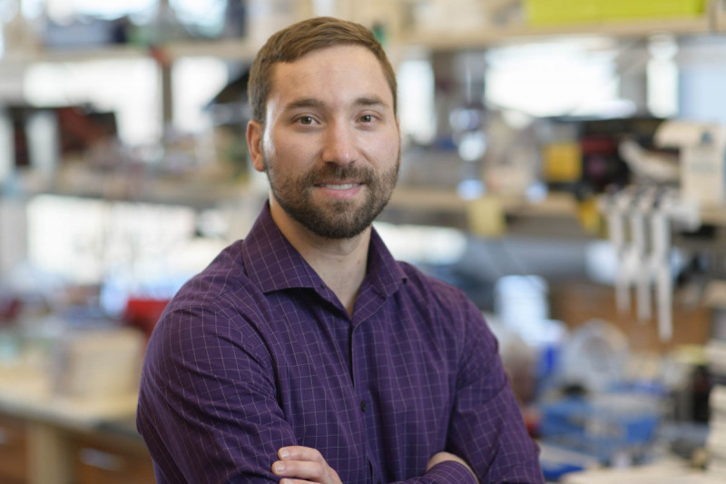 Daniel Ball, Research Fellow