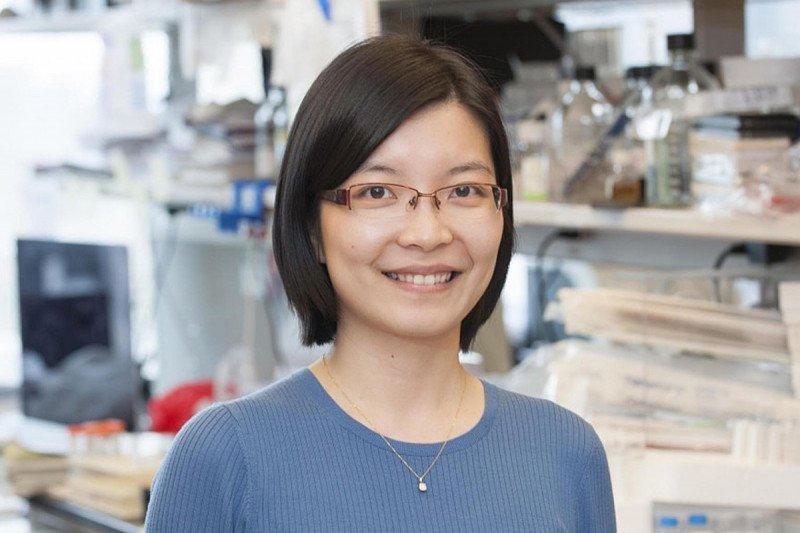 Wei Shi, Research Scholar