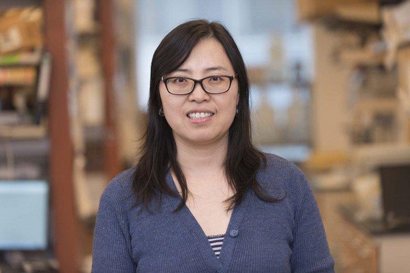 Xiaohong Jing, Lab Manager