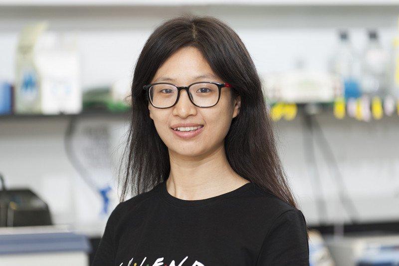 Junmei Yi, PhD