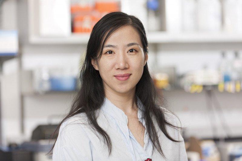 Jiao Wu, PhD