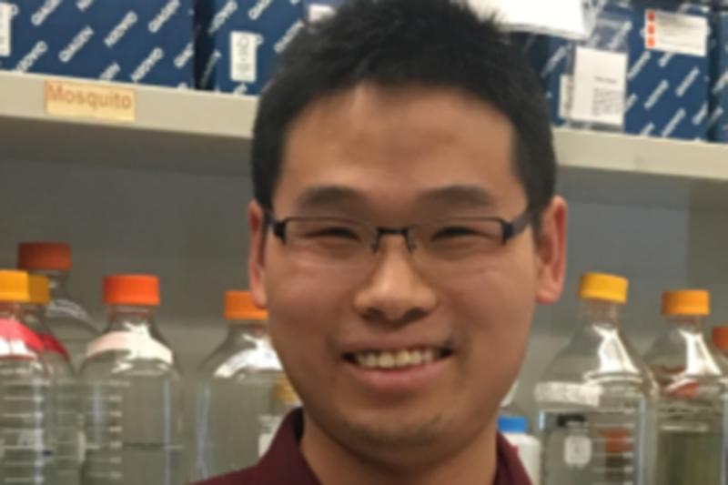 Juncheng Wang, PhD